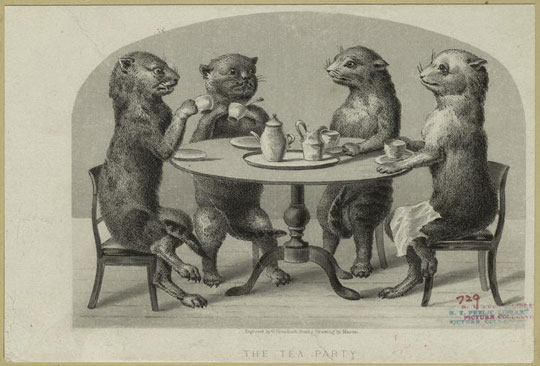 Animals as Humans